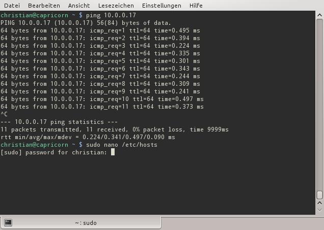 hosts-Datei ändern